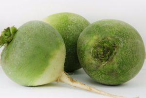 Зеленая редька: полезные свойства, противопоказания, польза и вред