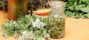 Лечебные сборы и народные рецепты на основе тысячелистника