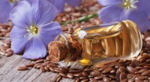 Льняное масло: полезные свойства, противопоказания, польза и вред