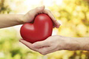 Польза для сердечно-сосудистой системы
