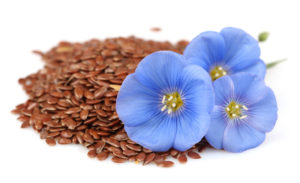 Польза семян льна при онкологии
