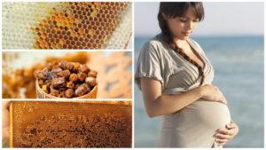 Употребление пчелиной пыльцы во время беременности и кормления грудью