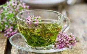 Чабрец чай – полезные свойства