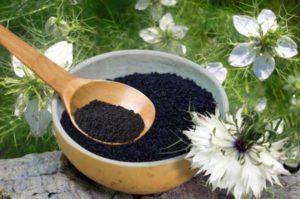 Черный тмин: полезные свойства, противопоказания, польза и вред
