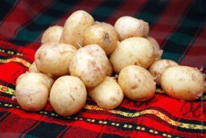 Картошка: полезные свойства, противопоказания, польза и вред