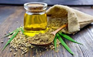 Конопляное масло: полезные свойства, противопоказания, польза и вред