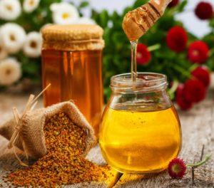 Мед с пергой: полезные свойства, противопоказания, польза и вред