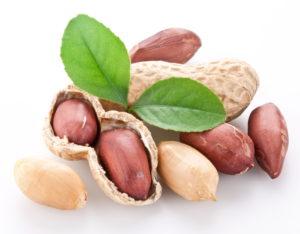 Полезные свойства арахиса: противопоказания, польза и вред
