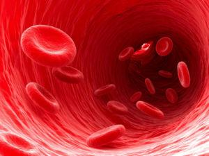 Противопоказания и вред ламинарии