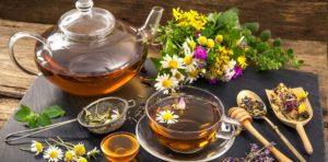 Цветы: полезные свойства, противопоказания, польза и вред