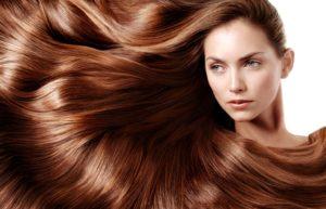 Польза эхинацеи для волос