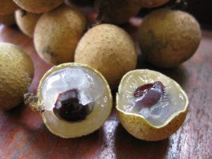 Как едят плоды лонгана