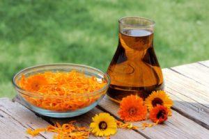 Календула цветки: полезные свойства, противопоказания, польза и вред