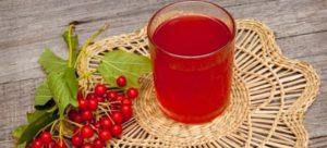 Сок калины: полезные свойства, противопоказания, польза и вред